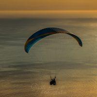 Paraglider, Gleitschirm über dem Meer bei Sonnenuntergang,, Kapstadt, Provinz Western Cape,  Südafrika, RSA, Afrika | Parglider over sea while sunset, Capetown, Province Western Cape, South Africa, RSA, Afrika