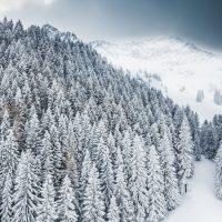 Alpenvorland, Bayern, Deutschland | Bavaria, Germany